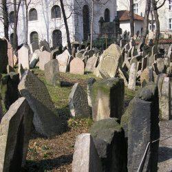El nuevo cementerio judío – Alegaciones